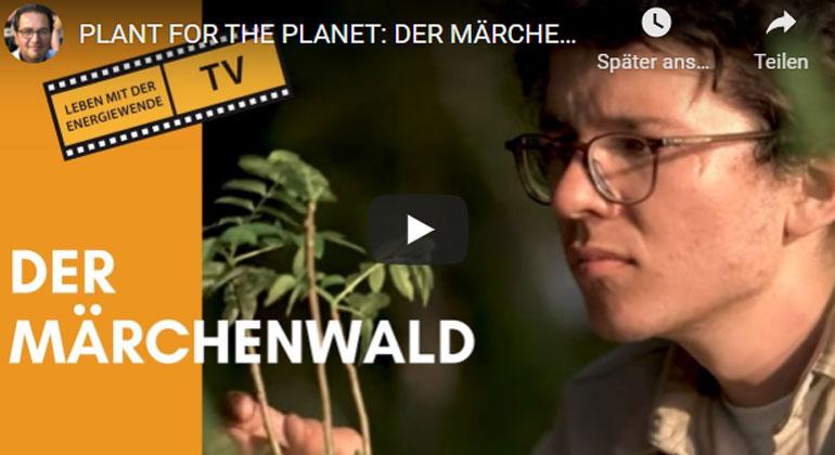 Transparenz TV | Der Märchenwald logo