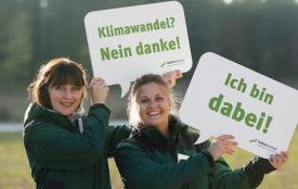 Naturstrom.de | Es gibt gute Bedingungen für kooperatives Arbeiten bei den Unternehmen der Erneuerbaren-Branche.