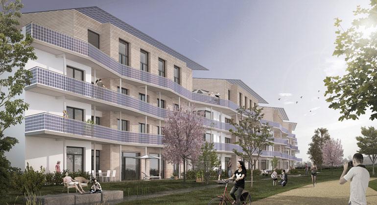Klimahäuser in Schallstadt zeigen Architektur der Zukunft