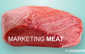 Greenpeace | Marketing Meat