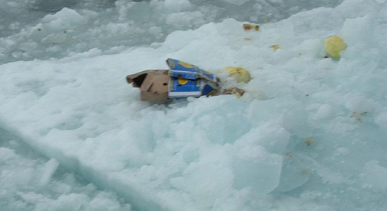 AWI | Melanie Bergmann | Litter on an Arctic ice floe.