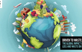 WWF.at | Driven to Waste