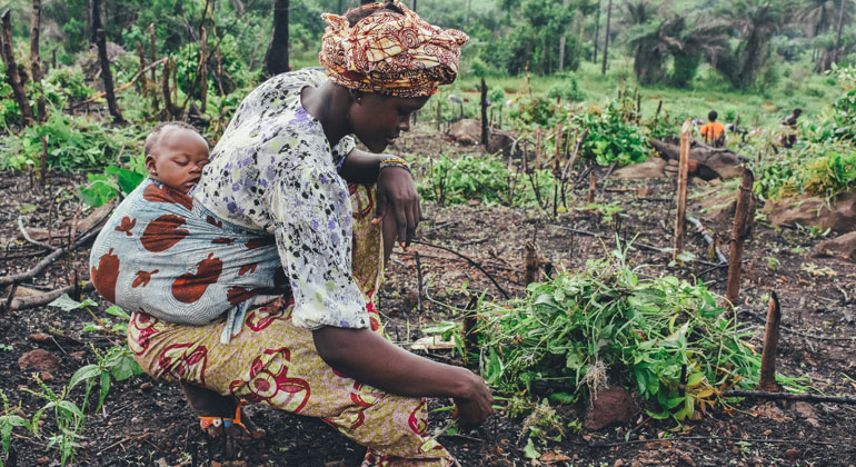 New pathway to mitigate climate change and boost progress on UN Sustainable Development Goals