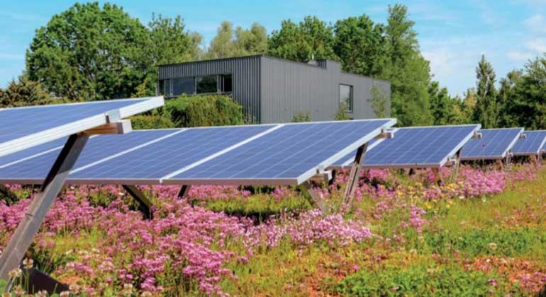 Leistungssteigernde-Effekte von PV-Gründächern durch Kühlung, Staubabsorption und Reflexionsverhalten