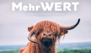 MehrWERT Magazin - 05-2021