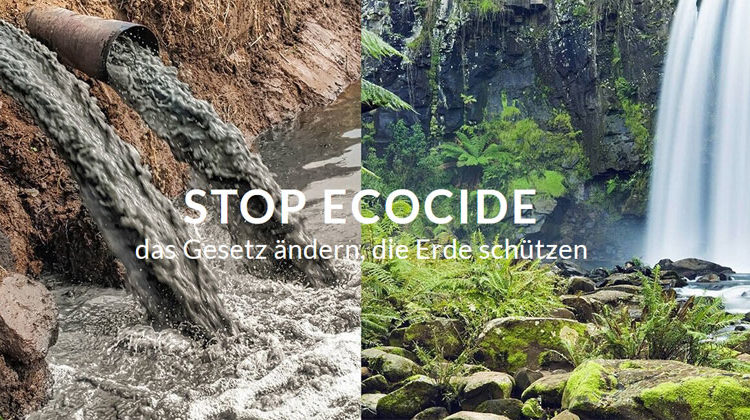stopecocide.de 2021