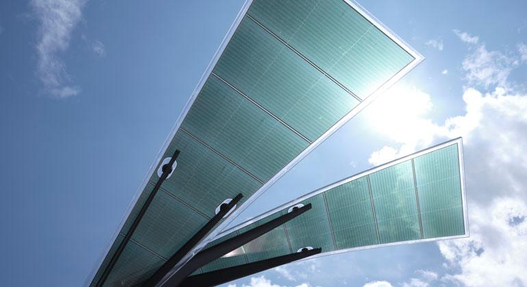 ASCA | Solarbaum von ASCA