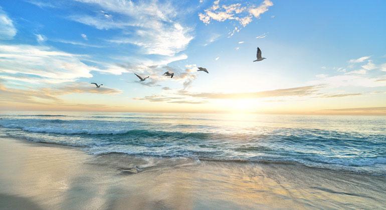 Nordostatlantik-Staaten schaffen eines der größten Meeresschutzgebiete der Welt